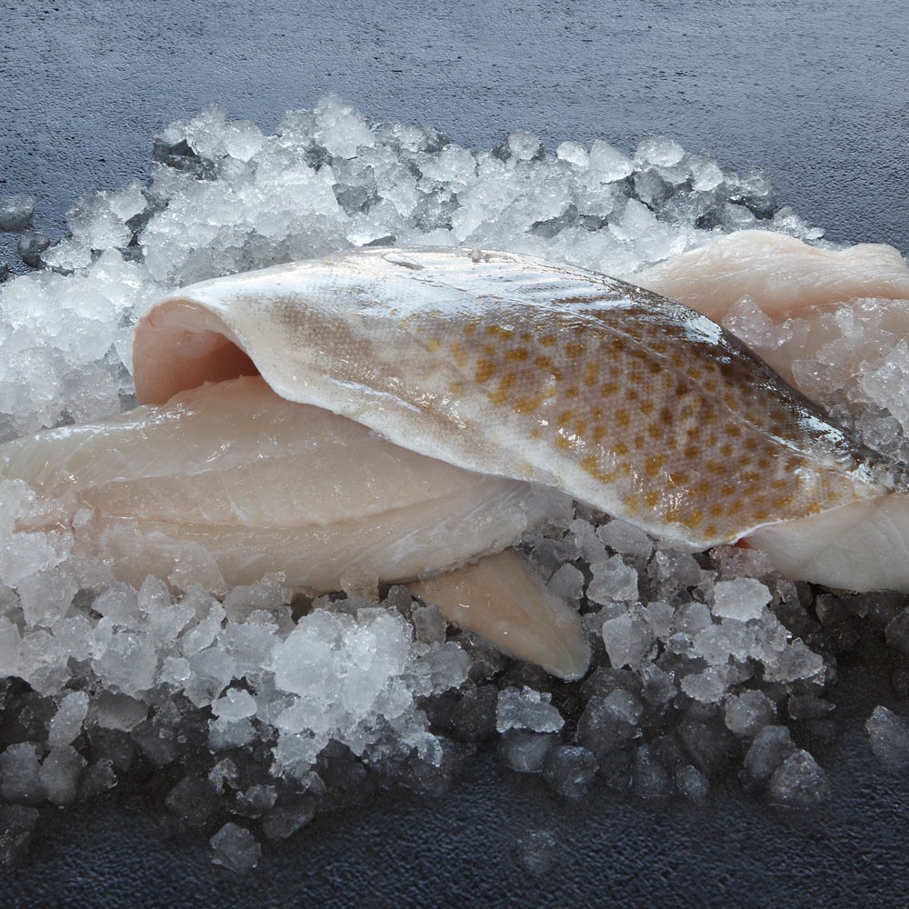 Frozen Cod Fillets | Frozen White Fish | Frozen Fish ...