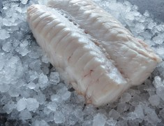 Silver Hake Shoulders