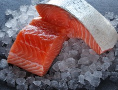 Salmon Fillet Portion