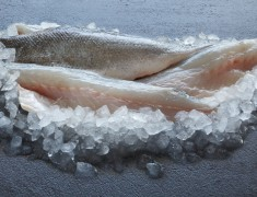 Wild Sea Bass fillet