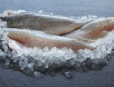 Wild Sea Bass fillet