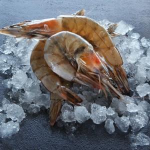 Raw Crevettes 20/30