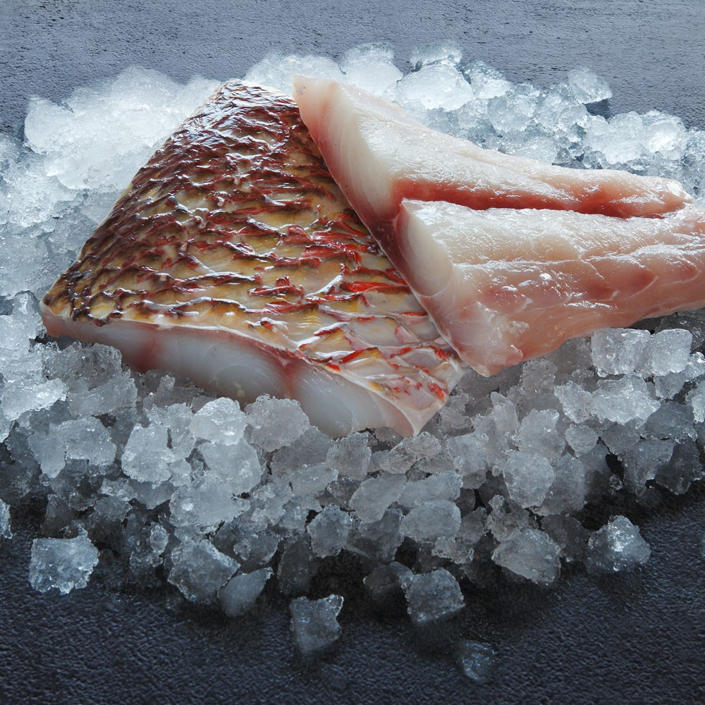 Fresh red snapper fillet exotic fish inspire me for Red fish fillet
