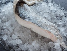 Skinless Silver Hake Fillets